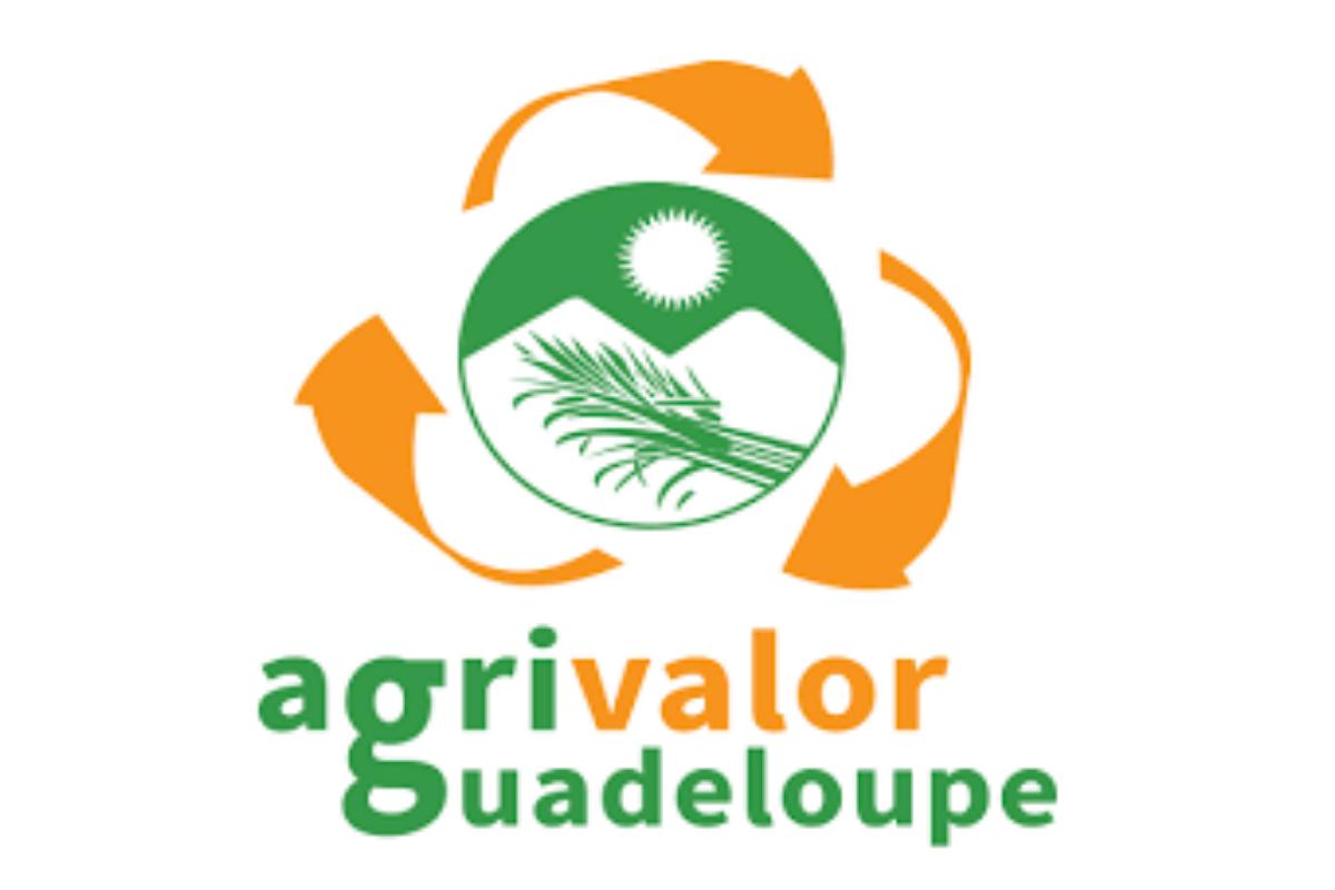 AGRIVALOR, acteur de la collecte des déchets de l'agrofourniture en Guadeloupe